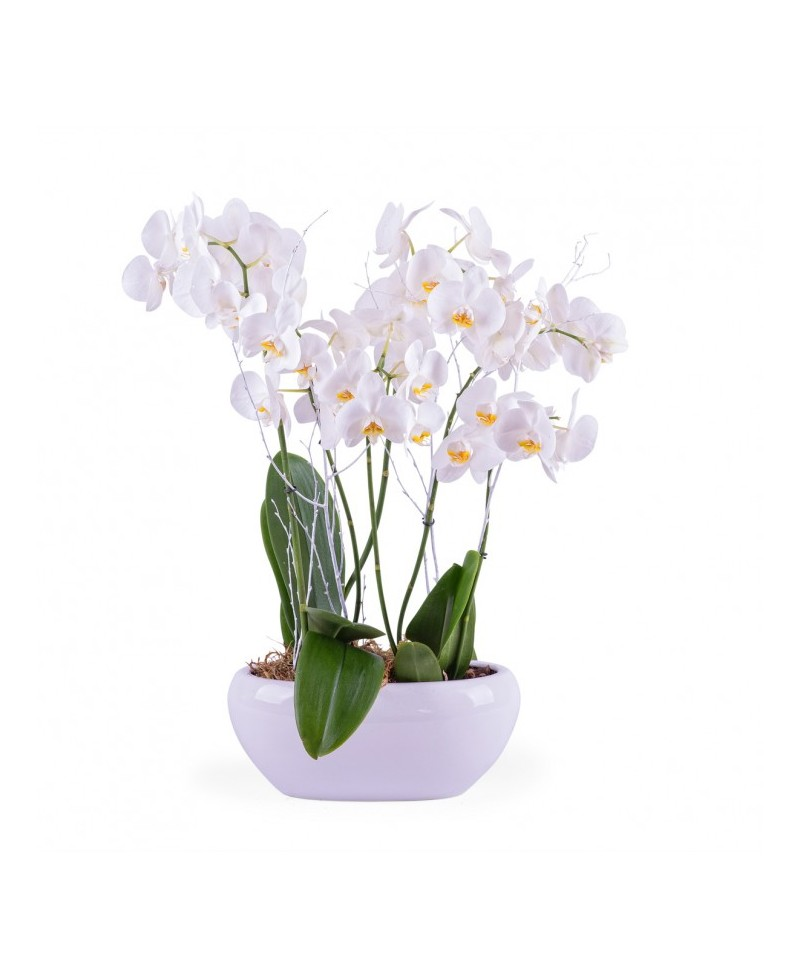Centro con orquídeas blancas